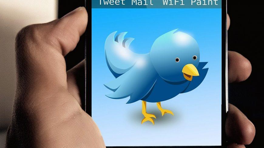Le choix d'opter pour la croissance du nombre de ses followers sur Twitter